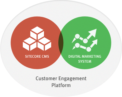 section_engagement_platform_circle